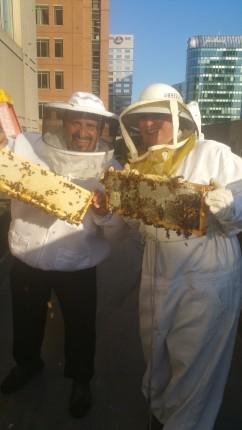 Chief Beekeeper Edwin